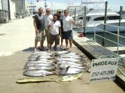 Phideaux Fishing Outer Banks Charters, GREAT SPRING FISHING