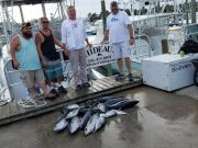 Phideaux Fishing Outer Banks Charters, Big pile of small tunas