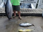 Phideaux Fishing, BLUE MARLIN, BIG EYE, YELLOW FIN AND MAHI