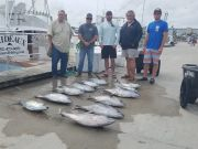 Phideaux Fishing, GOOD TUNA FISHING