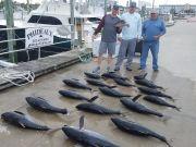 Phideaux Fishing, Still great fishing