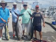 Phideaux Fishing, MORE BIG EYE