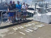 Phideaux Fishing, Tylers Mahi