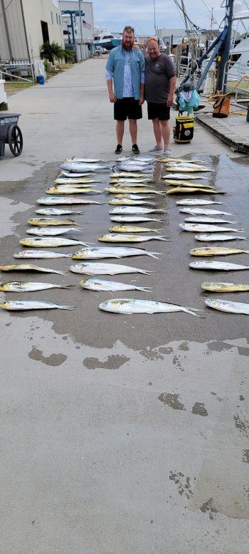 Phideaux Fishing, More mahi and tuna